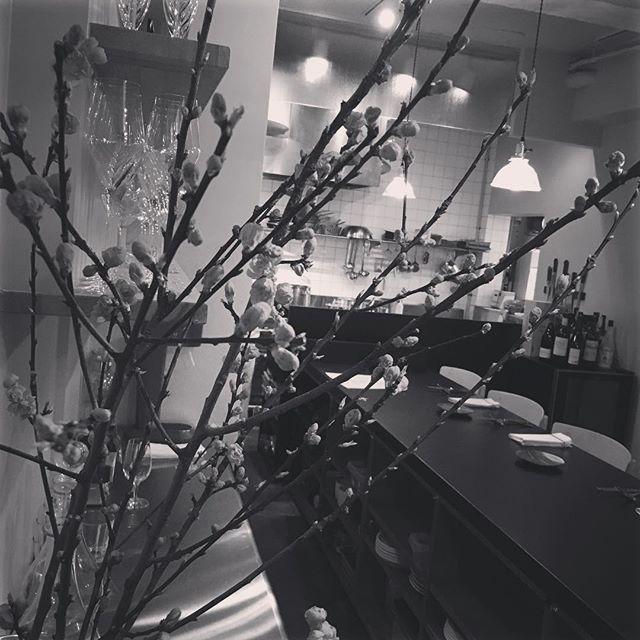 【3月のお休みのご案内】3月の店休日は以下のようになります。2日(水) 3日(木) 9日(水) 15日(火) 16日(水)23日(水) 30日(水)宜しくお願い致します。#french #ici #restaurant